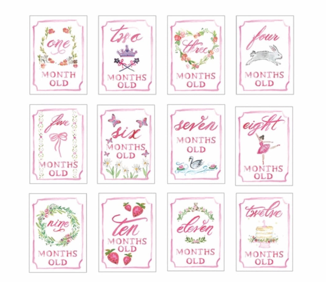 Month by Month Card Set - Pink