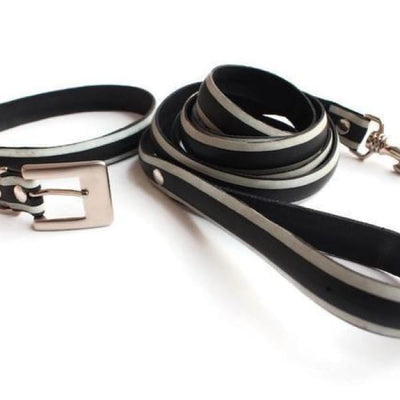 Bicycle tire Dog Collar and Leash set - Accessories
