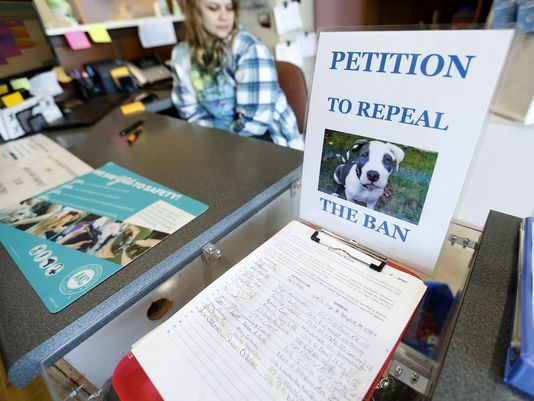 Springfield News-Leader Image Pit Bull Petition signing