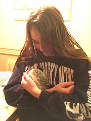 Sarah and Bruce the hedgehog