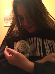 Sarah and Bruce the hedgehog 2
