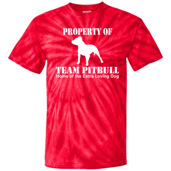 Team Pit Bull - CD100Y Youth Tie Dye T-Shirt Spider Red YXS - Little Pit Shop