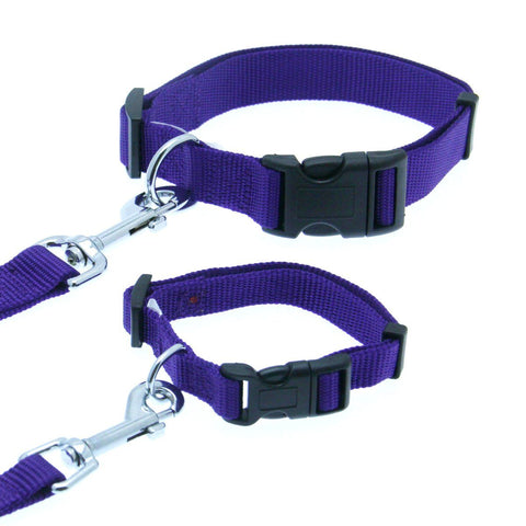 Barking Basics Dog Collar - Purple,  | Pit Bull T Shirts, Hoodies and more | Little Pit Shop