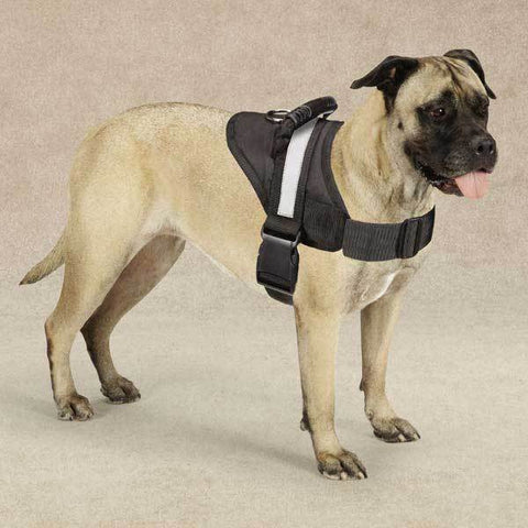 Guardian Gear Excursion Dog Harness,  | Pit Bull T Shirts, Hoodies and more | Little Pit Shop
