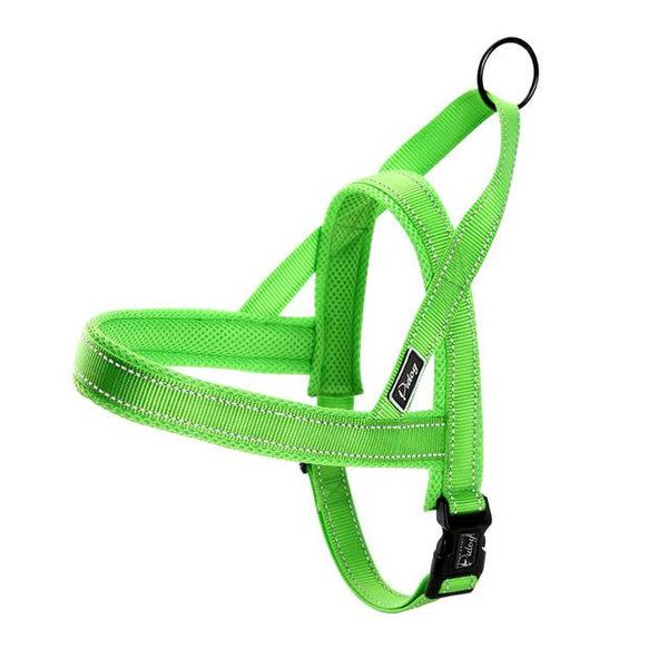Reflective Dog Harness + Leash Green Harness L - Little Pit Shop