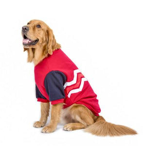 College Preppy Dog Sweater Red S - Little Pit Shop