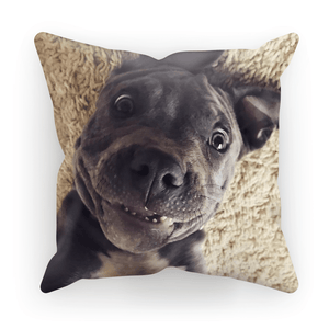 Lil D Crazy Eye Cushion Cover By Little Pit Shop, Homeware | Pit Bull T Shirts, Hoodies and more | Little Pit Shop