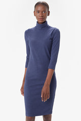 VILLERAY TURTLENECK DRESS
