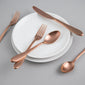 Fiesta® Maraca Copper Satin 20 piece Flatware Set
