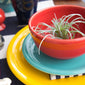 Small Bistro Bowl - Fiesta Factory Direct