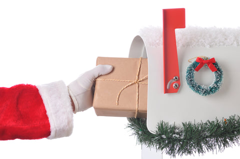 New Express Holiday Shipping options!  Get your gifts in time from Nelson Makes Art!