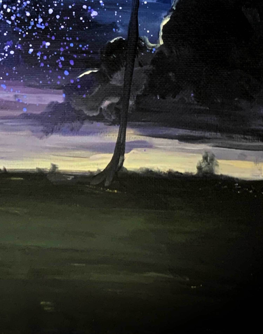 Capsule Tale #29 - Palm Trees & Night Sky Painting