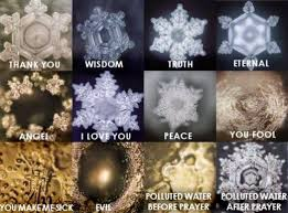 Photos from Dr Emoto water study