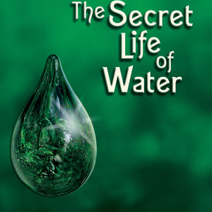 Secret Life Of Water    (Book) By Masaru Emoto - Love Lingo