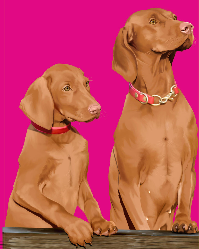 Pet Portraits in Warhol Style