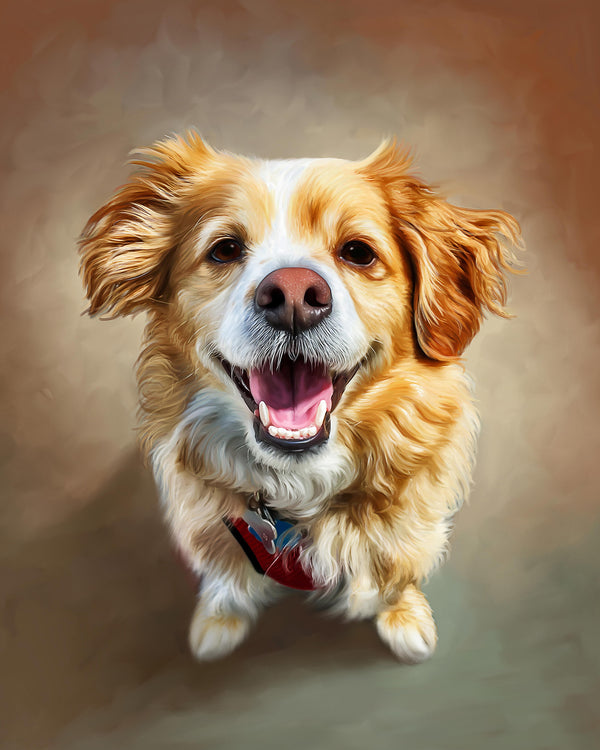 Order Digital Pet Painting Portrait