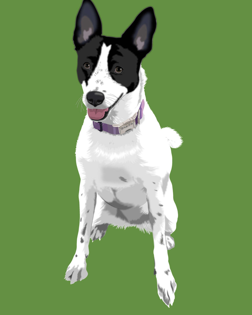 Pet Portraits Artwork in Warhol Style