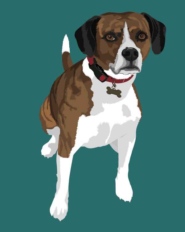 Order Pet Portraits in Warhol Style Online