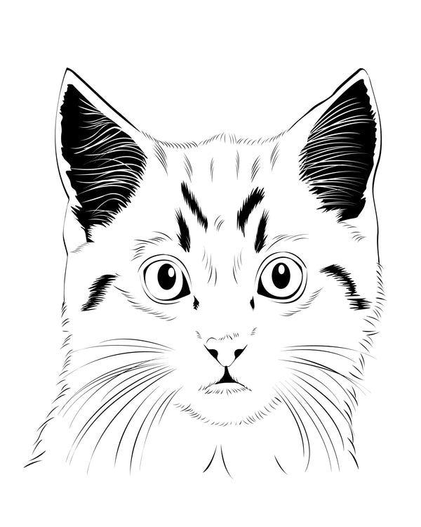 Line Art Pet Portraits