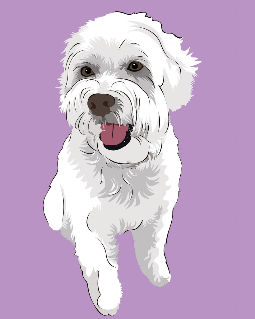 Order Modern Pop Art Pet Portraits Online