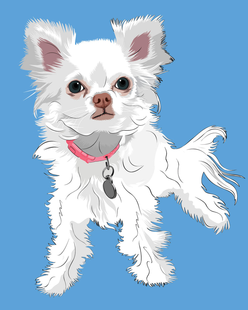 Pet Portraits in Modern Pop Art