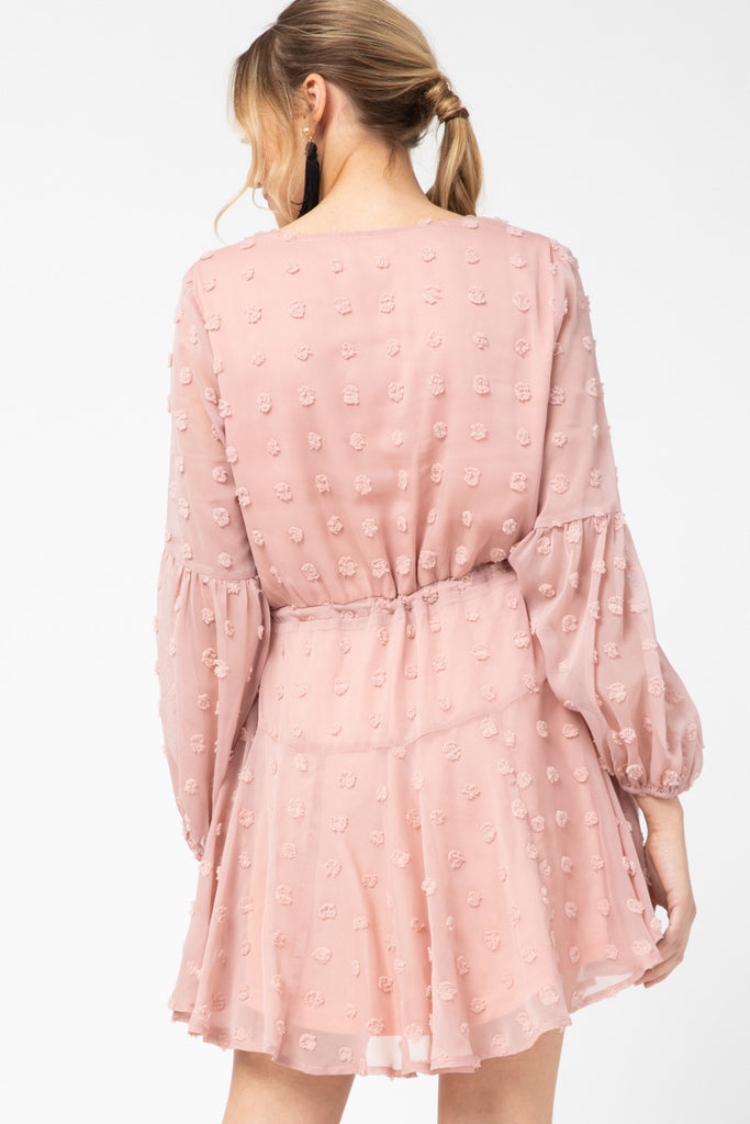 Blush Swiss Dot Dress