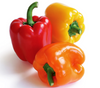 Red Peppers, 1