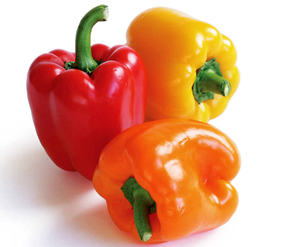 Coloured Peppers ~908g