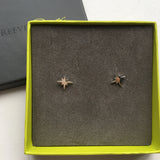Follow That Star Stud Earrings