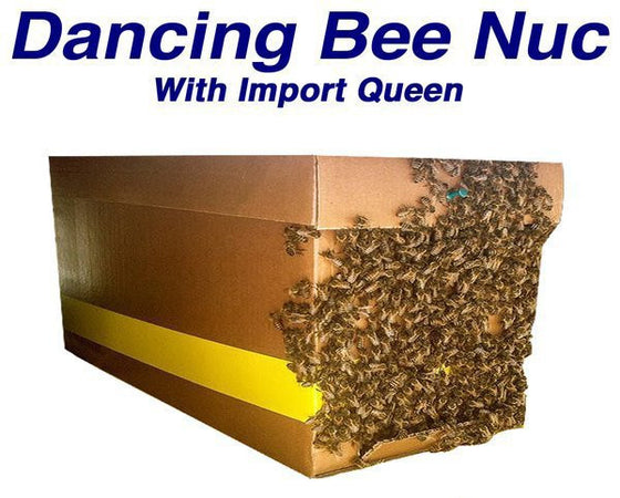 Dancing Bee Nuc <br> Pick up date: Tuesday May 18th 2021