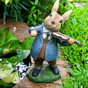 Rabbit the Violinist
