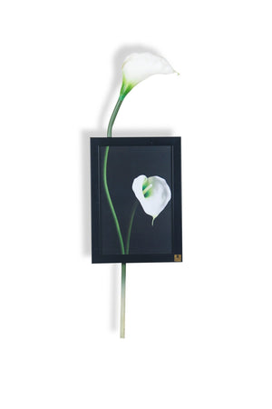 Cala Lily Vertical Wall Art | Collection Roha