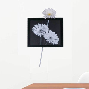 Gerbera White (Horizontal) Wall Art | Collection Roha