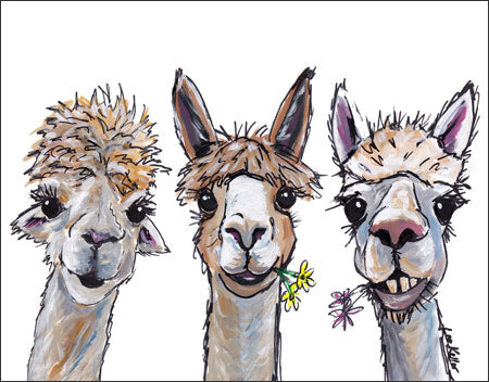 Alpaca Trio - Cute Tin Sign - Made in the USA