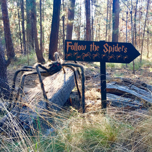Follow the Spiders Sign - Carved Cedar Wood