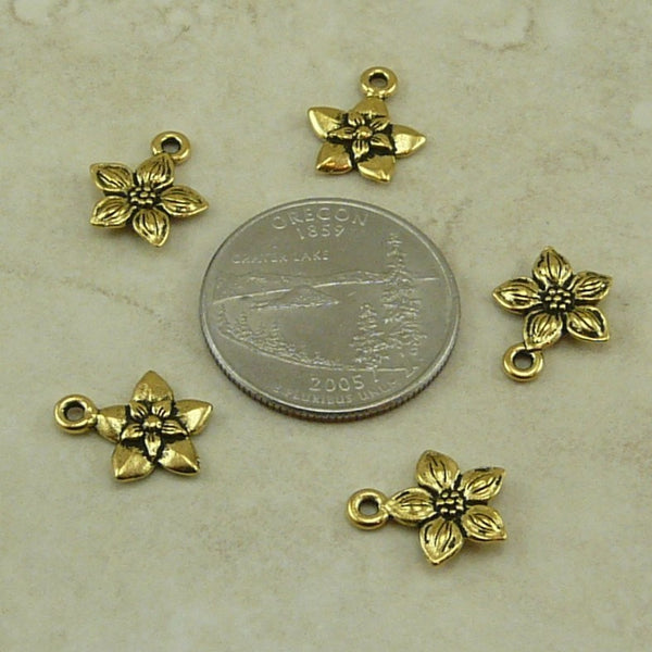 Star Jasmine Charm - Qty 5 Charms - TierraCast 22kt Gold Plated Lead Free Pewter