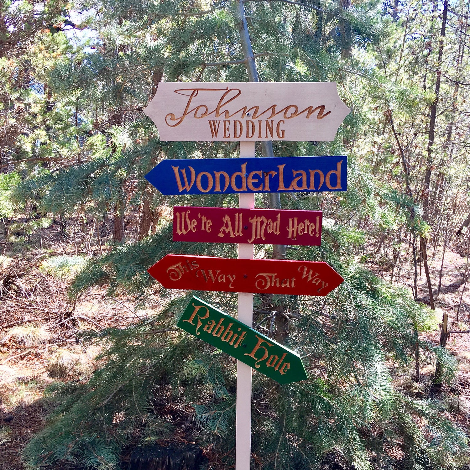 Wedding in Wonderland Themed Directional Sign Set