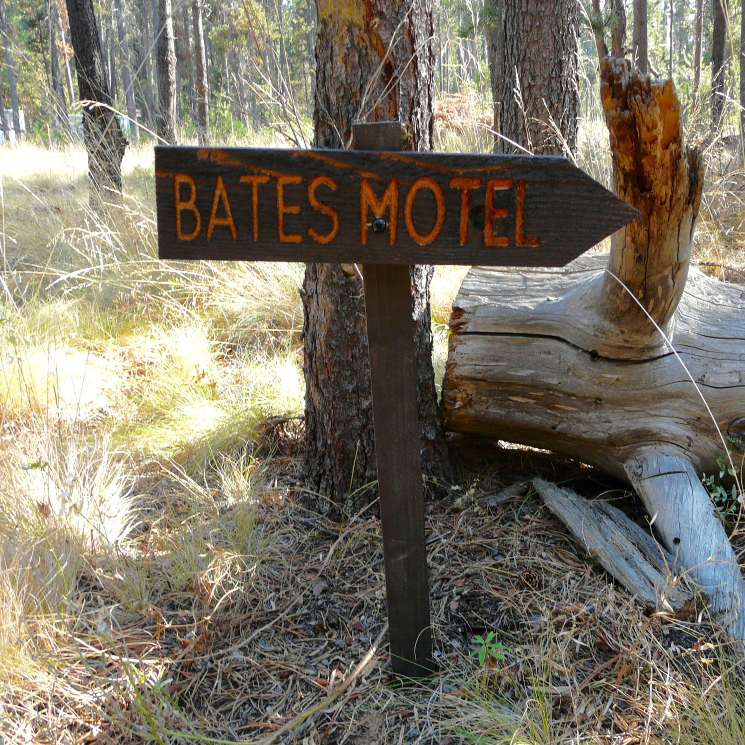 Psycho Bates Motel Halloween Lawn Ornament Sign - Cedar Wood Holiday Decor