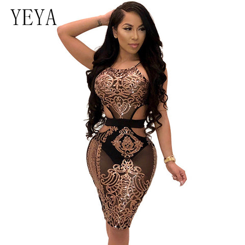 ca13ce3080e990 YEYA Women Sequin Dresses Halter Backless Hollow Out Party Night Club Dress  Sexy See Through Bodycon