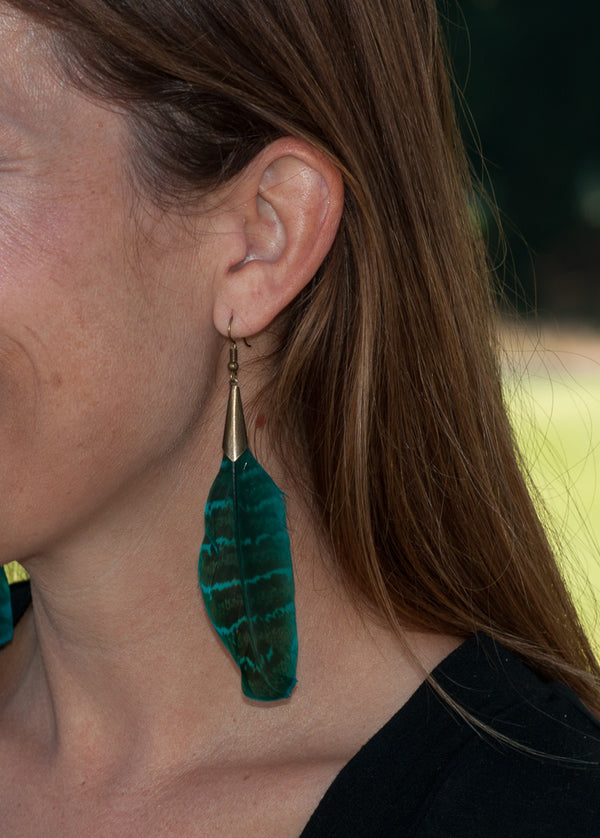 Turquoise Feather Drop Earrings