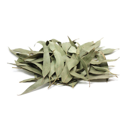 Eucalyptus Leaves 1oz