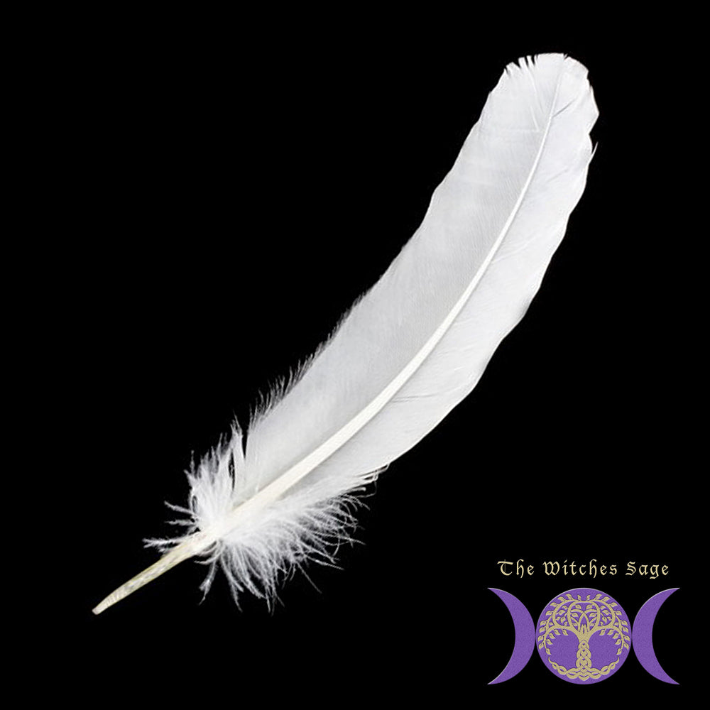 White Feather 12""