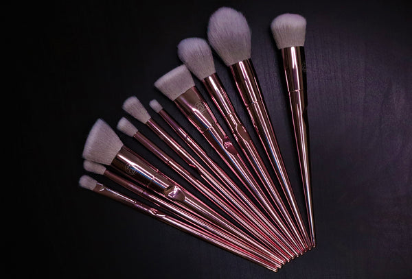 10 pcs rose brush set