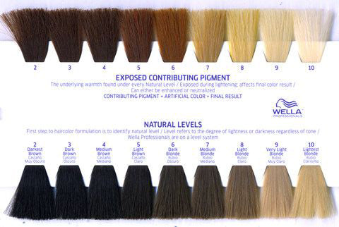 Hair Levels and Underlying Pigment