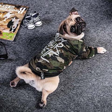 Image of New Warm Clothes Autumn, Winter For Dog - IGOGES
