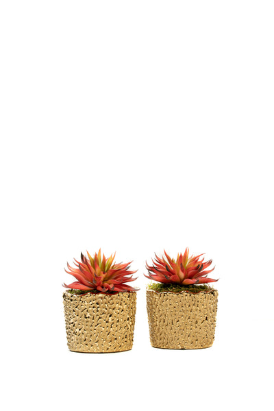 Set of 2 Gilt Small Planters