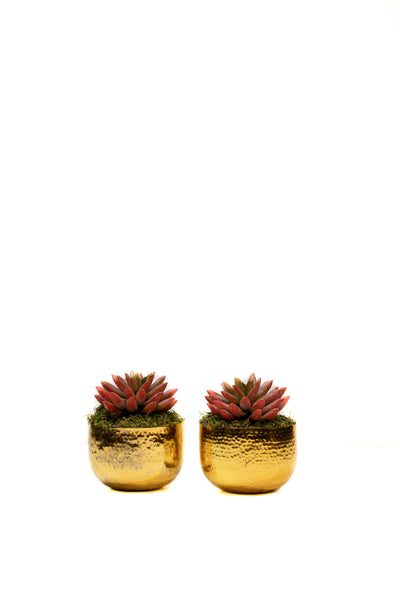 Set of 2 Burnished Gold Planters