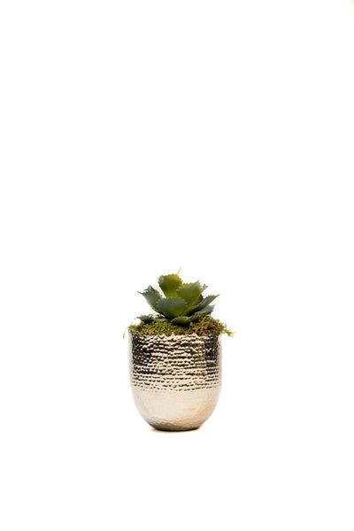 Burnished Silver Planter