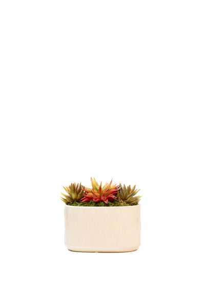 Pale Cream Leaf Ceramic Planter