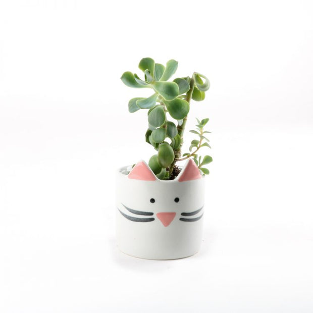 Trade Aid Mini White Cat Planter